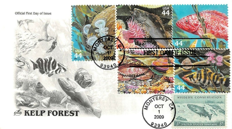 KELP FOREST Cover 2008 cachet unaddressed Stamps 2008 First Day Cover FDC