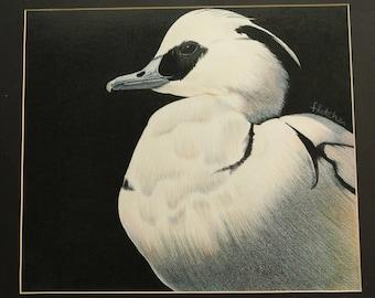 Poise Duck