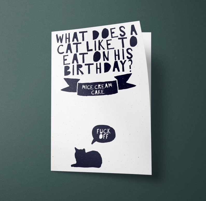 Cat Joke Funny Birthday Card Perfect For Friends