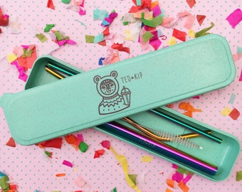 Rainbow Metal Straw Set With Mint Green Eco Friendly Wheat Plastic Carry Container