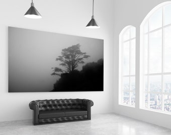 Old Grey Tree | Black and White Photography | Fine Art | Photo | Fog Mist | Mystic Shadow Enchanted Silhouette | polychromatophil |