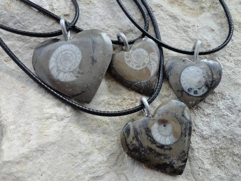 heart of ammonite pendant necklace