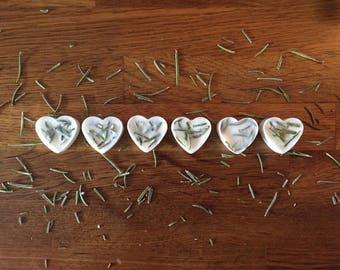 Rosemary Wax Melts • Soy Wax Melts • Handmade Melts • Luxury Melts • Vegan Melts