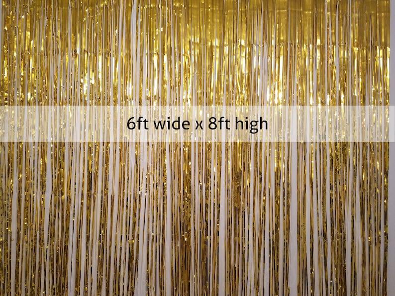 Large Foil Fringe Photo Backdrop Curtain