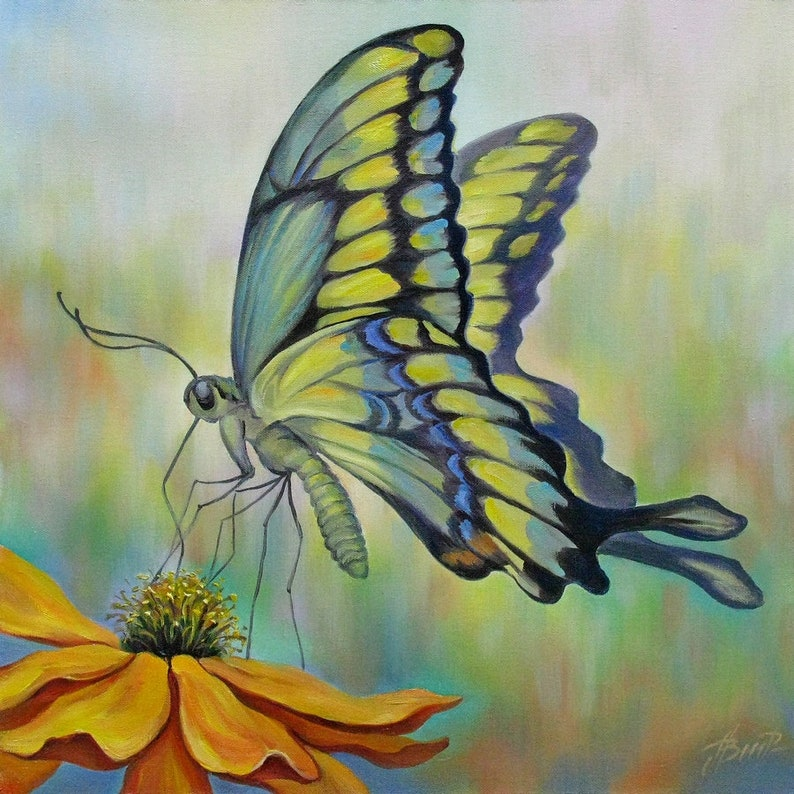 Images of Butterfly Oils Westover Laree - #rock-cafe