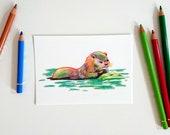 Colored pencil otter, postcard A6-format