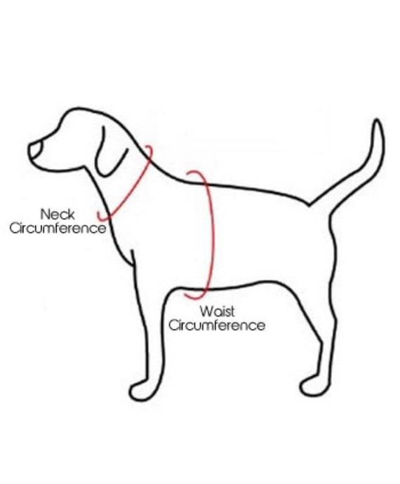 Dog Harness Bow