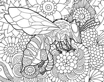 Bee Coloring Page Etsy