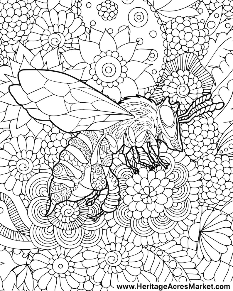 Bee Theme Adult Complicated Coloring Page Pdf Digital Download Etsy