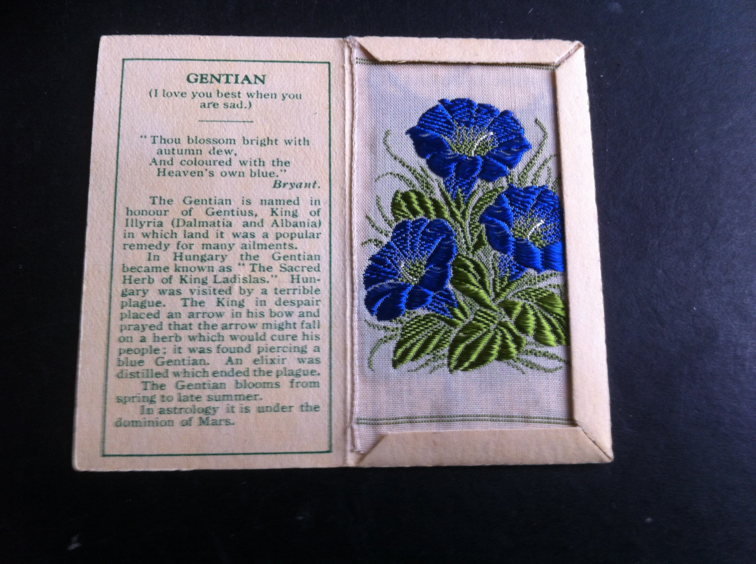Kensitas Wix Small Silk Flower Cover And Silk Gentian Folder C Etsy