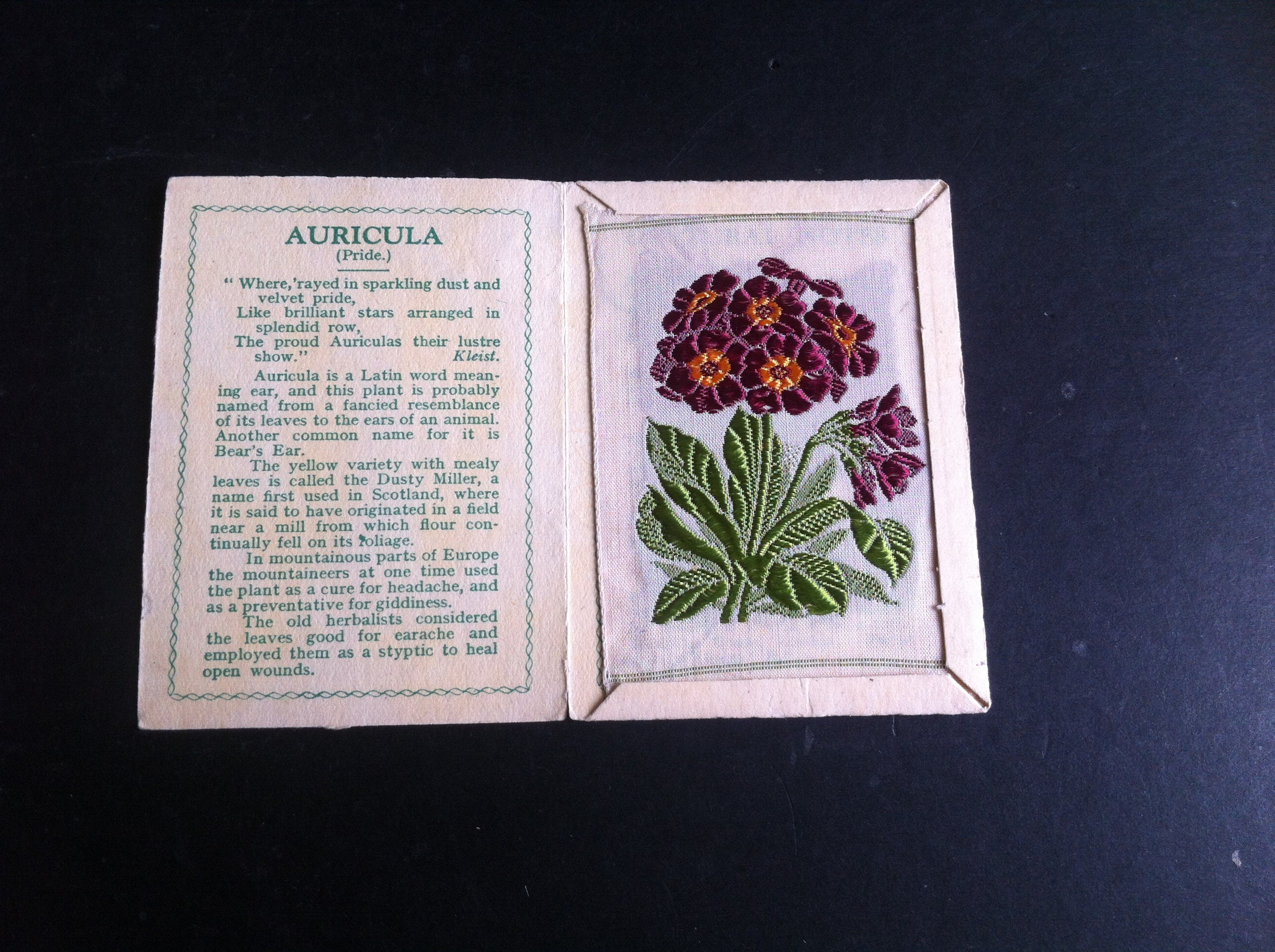 Vintage Kensitas Silk Flowers Cigarette Cards 1935 Auricula D Etsy
