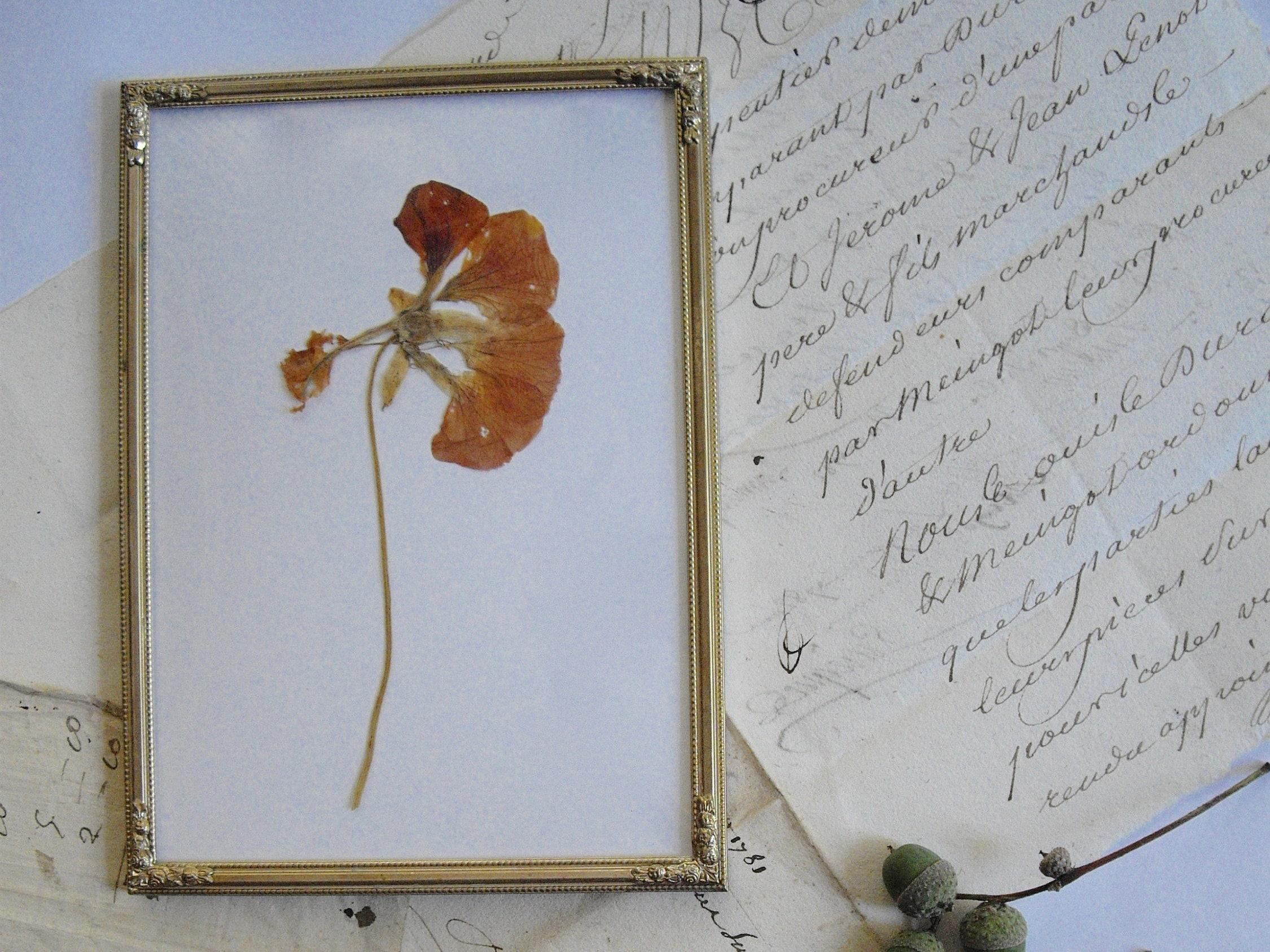 Vintage versilberter Bilderrahmen mit Rosenverzierungen und | Etsy