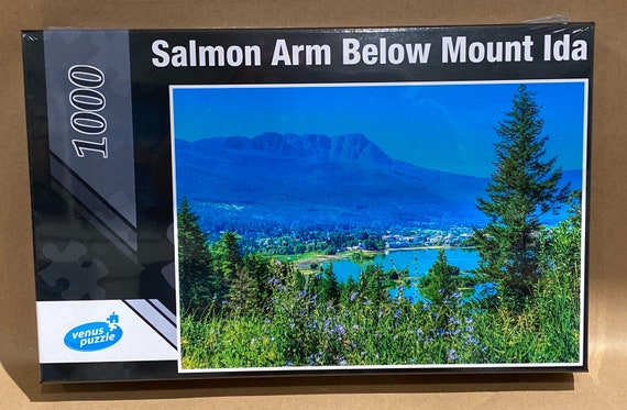 Salmon Arm Below Mount Ida