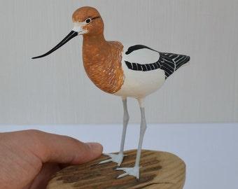American avocet / Recurvirostra americana - wood carving bird