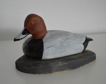 Common pochard Duck decoy Aythya ferina