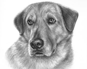 6553f58c4dda Custom dog drawing in charcoal from your photo / Hand drawn portrait of  your pet dog or cat / Customized dog lover gift / Pet memorial