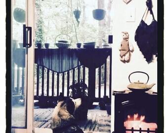 "Unique Energy Neutralizing Doll - ""Bone Ward"" - Handmade Juju Poppet"