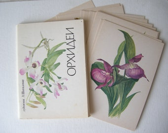 Orchids postcards Garden postcards Floral postcards Set of 16 botanical drawings Floral drawings Flower prints drawings by Shipilenko