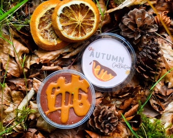 Autumn Collection - Chocolate Orange Soy Wax Melt Pot, Chocolate Orange dupe wax melt
