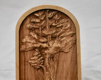 Redwood Tree Art