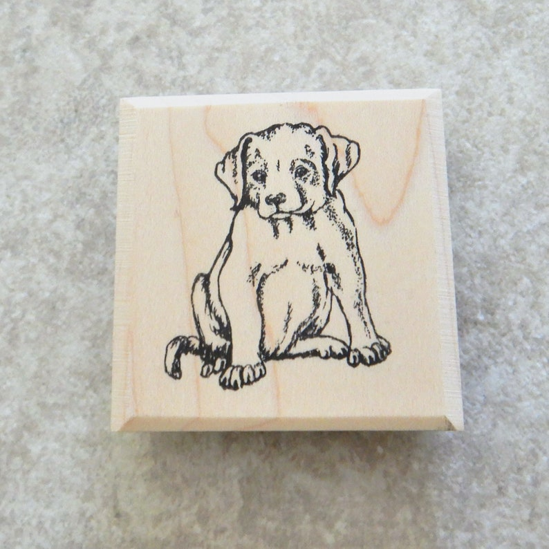 Puppy, Baby Dog, Canine, Mutt, Household Pet, Domestic Dog, Animal  Companion, Mounted Rubber Stamp, Wooden Block stamp / SUT - D2245
