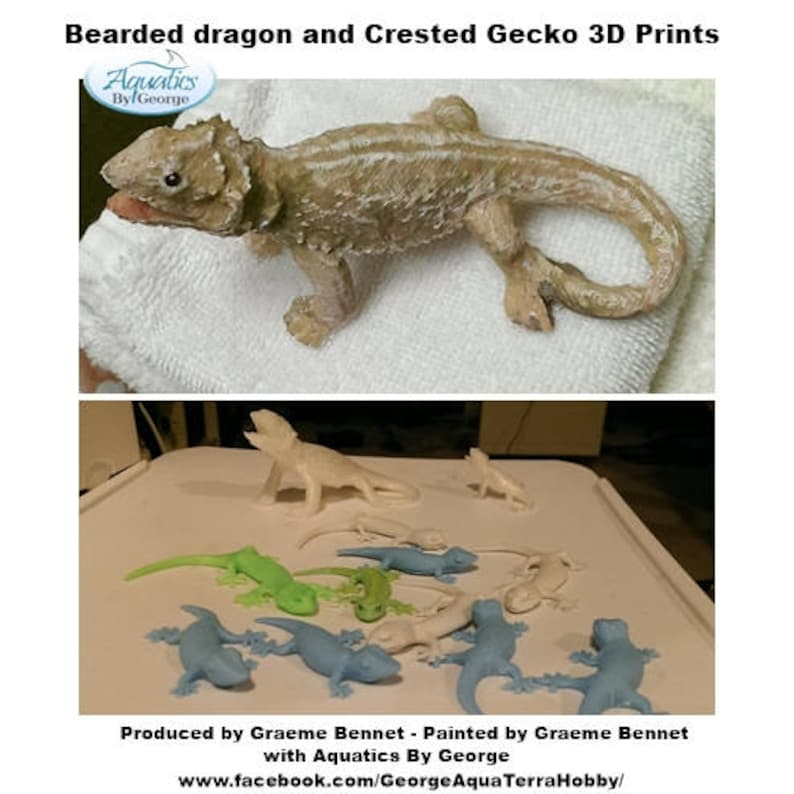Bearded Dragon Figurines, Fridge Magnets, Tree Ornaments