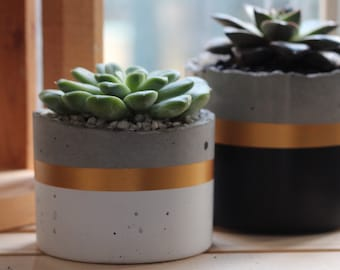 Cylinder Concrete Planter | Round Succulents Pots | Cement Plant Pot  |  Cactus Decor |  Housewarming Gift  | White Gold Black