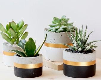 Cylinder Concrete Planter Succulent Pot