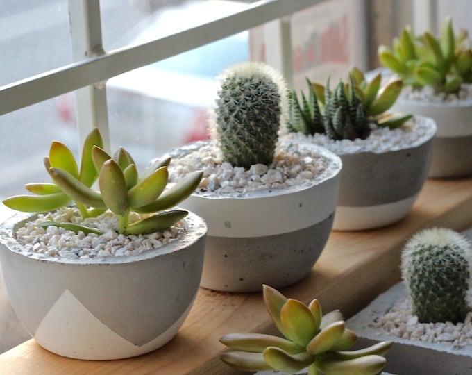 Small Planters