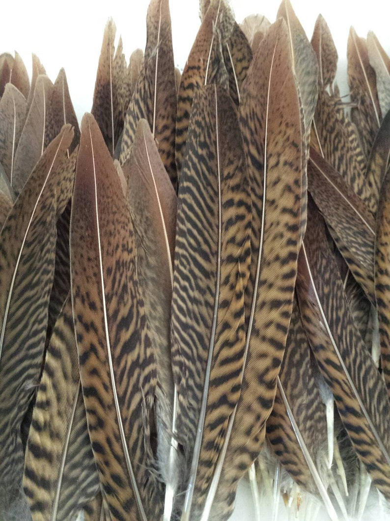 "Wedding Decoration 11/"" 20 Cock Pheasant Tail Feathers 9/"" Crafting"