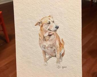 Watercolor Pet Portrait, original watercolor painting