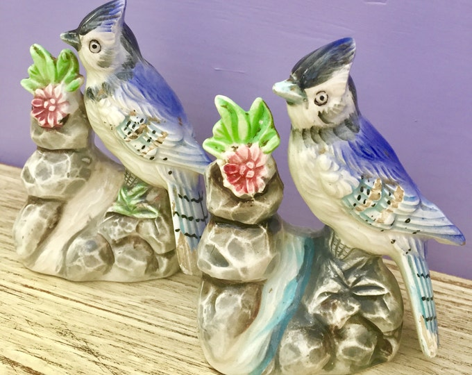 Vintage Bluebird Salt and Pepper Shakers, Mid Century Bird Salt and Pepper Shakers, Ceramic Bird, Cottage Chic Kitchen