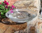 Clear Honeybee Glass Birdbath Bowl, 12 inch