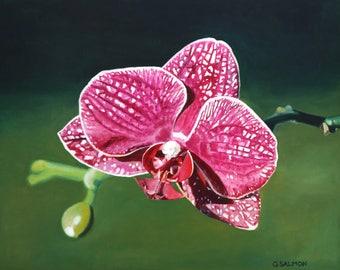 Phalaenopsis Orchid (oil painting, 2018)