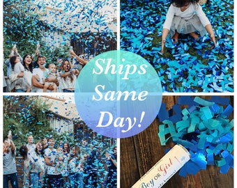 2 - 12 inch Confetti Cannons Sale! Ships same day! 12 Inch Confetti Cannon Gender Reveal Confetti Cannon