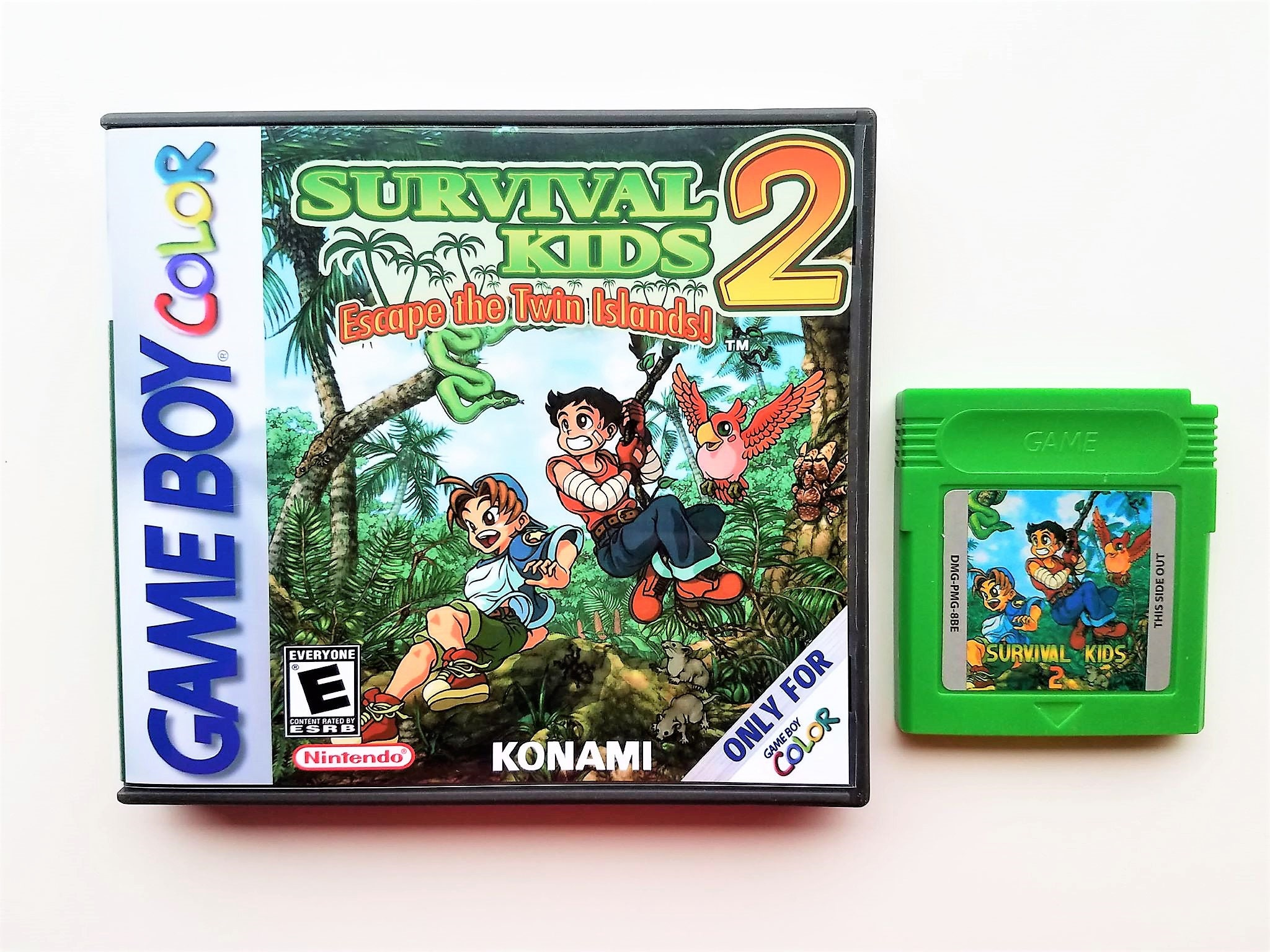 Survival Kids 2 W Custom Case Box Game Boy Color Gbc Nintendo Etsy
