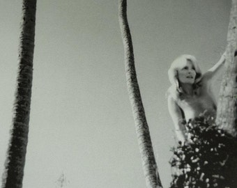 Vintage Pat Booth Print, Available Framed, Erotic Art, Sexy Erotica, Artistic Nude Photography, Topless Woman, Hide and Seek Palm Tree Decor