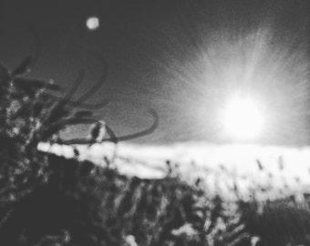 White Sun, Fine art photography, Nature photography.