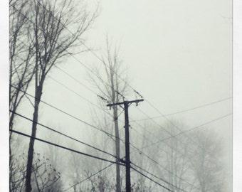 Cruz, Fine art photography.
