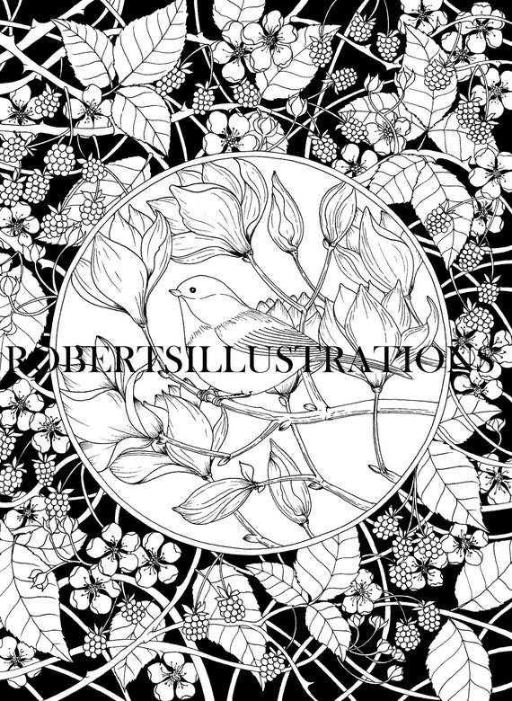 Botanical Coloring Pages Flowers And Bird Coloringpage Etsy