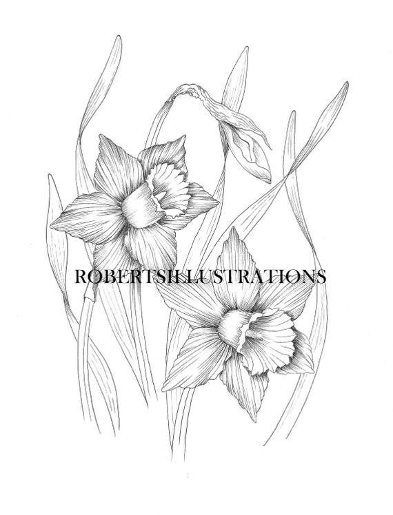 march flower coloring pages - photo#20