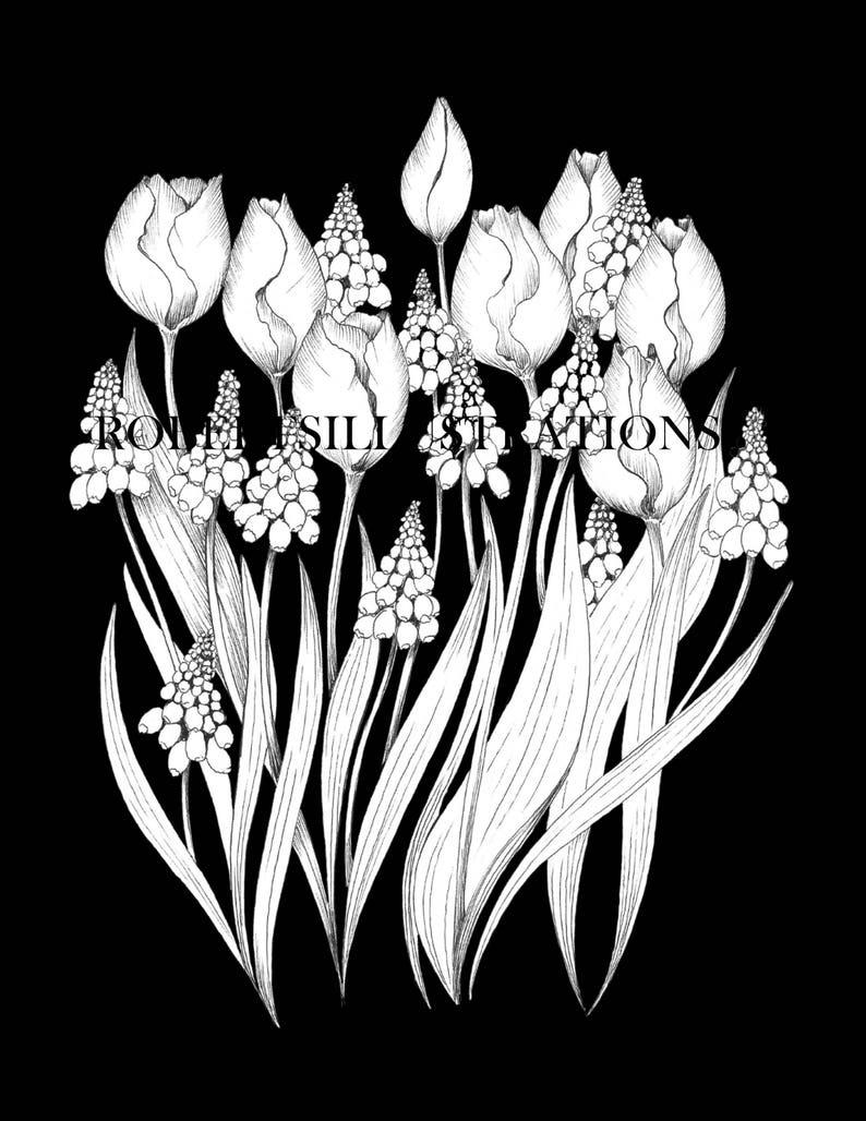 Kleurplaten Bloemen Tulpen.Botanische Coloringpage Van Tulpen En Druif Hyacint Instant Etsy