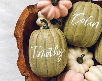 Small Personalized Pumpkin place cards, Thanksgiving table decor, sage green pumpkin table setting fall centerpiece, personalized pumpkins