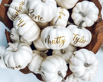 Small Personalized Pumpkin place cards, Thanksgiving table decor, white pumpkin table setting fall centerpiece, personalized pumpkins