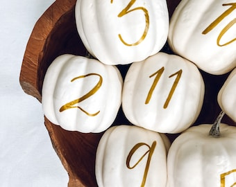Small Personalized Pumpkin table numbers, Fall Wedding table numbers, white pumpkin table setting fall centerpiece, pumpkin table numbers