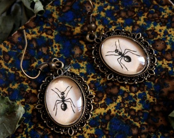 Ant bronze cabochons earrings oval 13x18mm insect botanical steampunk BOCB027