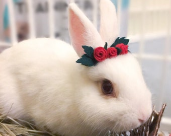 Pet Rabbit Rose Crown, Pet Rabbit Flower Accessory, Pet Rabbit Flower crown
