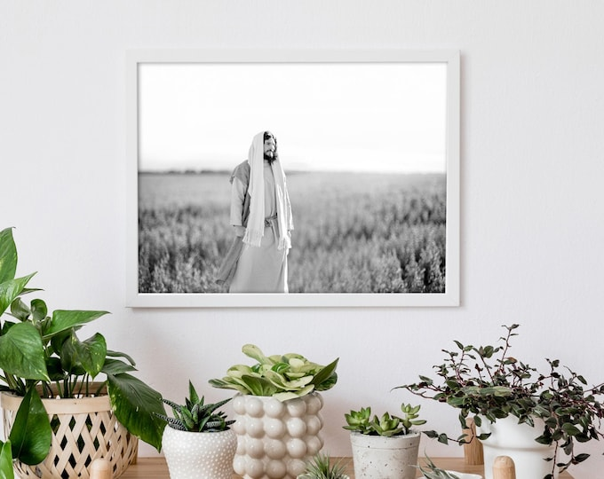 Jesus Christ in Field- Modern Christian Print, Black White Photo