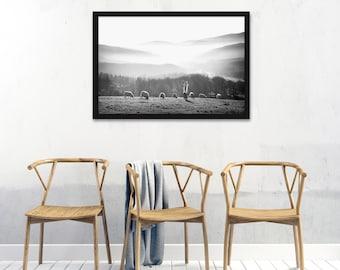 Jesus- Feed My Sheep, Gorgeous Modern Print- Horizontal