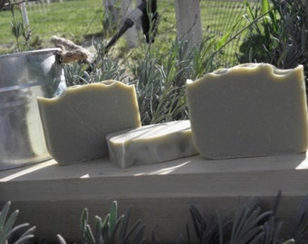 Aleppo Soap-Laurel Berry (cold processed, natural, healing, organic)